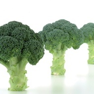 Naxos F1 - 1000 sem - Seminte de broccoli ce prezinta o capacitate mare de adaptare la diferite conditii de crestere rezistent la mana cu un aspect deosebit de la Sakata