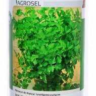 Patrunjel de frunza Plain Leaved (250 gr), soi semi-timpuriu, Agrosel