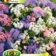 Pufuleti Mix - Seminte Flori Pufusor Ageratum de la Florian