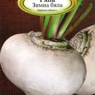 Ridichi ALBA DE IARNA - 100 gr - Seminte de Ridichi Soi timpuriu Alba de iarna