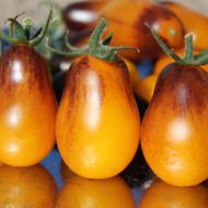Rosii Indigo Pear Drops (20 seminte) seminte de rosii tip Cherry cu gust excelent, dulce, soi exotic foarte rar, Florian