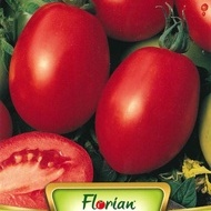 Rosii RIO GRANDE - 100 gr - Seminte de Tomate Soi Semitimpuriu de camp pentu Industrializare Florian Bulgaria