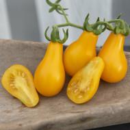 Rosii Yellow Pearshaped (90 seminte), tomate mici, galbene, tip para, Agrosem