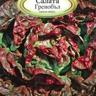 Salata GRENOBLE - 2 gr - Seminte de Salata Grenoble de la Florian Bulgaria