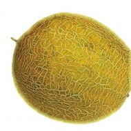 Seminte pepene galben Supra F1 (500 seminte), hibrid extratimpuriu, De Ruiter Seeds