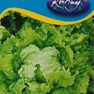 Seminte salata Doree de printemps (2 gr), salata batavia, Kertimag