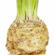 Telina Anita (1 gr) seminte de telina soi tardiv foarte productiv, Agrosem