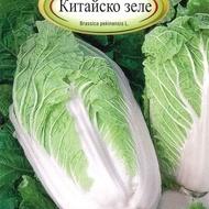 Varza CHINEZEASCA - 3 gr - Seminte de Varza Soi chinezesc