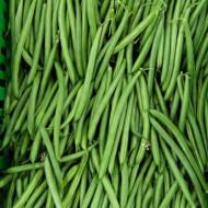 Contender (50 grame) fasole pitica verde, fara ate, pastaie cilindrica, Agrosem
