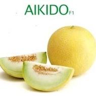 Aikido F1 - 1000 sem - Seminte de pepene galben cu fructe uniforme grele de pana la 2 kg rotunde cu pulpa alb-verzuie foarte dulce de la Sakata