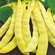 Alexia (50 grame) seminte fasole urcatoare, pastai late galbene, lungi, fara ate, Mefim