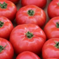 Aphen F1 (10 seminte) de tomate roz cu crestere nedeterminata, extratimpurii, Clause