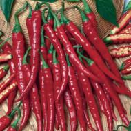 Ardei iute Cayenne (150 seminte), ardei iuti subtiri lungi, soi semitimpuriu, Agrosem