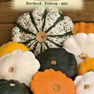 Dovlecel Patison mix (10 seminte), dovlecel Patison, soiuri productive , diferite culori, Agrosem