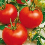 Heinz 1350 (300 seminte) rosii cu crestere determinata pentru camp, Agrosem