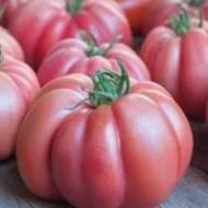Monterosa F1 - 250 sem - Seminte de rosii nedeterminate cu fructe mari de 220-240 de grame foarte costate de culoare roz si gust excelent de la Fito Semillas