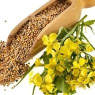Mustar Alb - Seminte Plante Aromatice Mustar Alb de la Florian