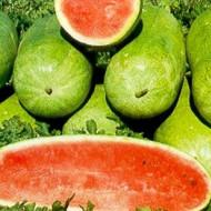 Pepene verde Charleston Gray (1 kg), seminte de pepene verde soi semitimpuriu, suculent, dulce, Agrosem