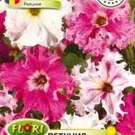 Petunia Fimbriata - Seminte Flori Petunia Fimbriata de la Florian
