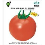 Sabrina F1 – 1 gr – Seminte Ecologice de Tomate cu Crestere Nedeterminata Semitimpurii de la Biosem