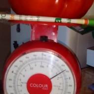 Seminte rosii de gradina Gigant Rosu (10 gr), crestere nedeterminata, Florian