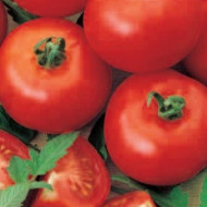 Tomate Buzau 4 (1 kg), seminte de rosii soi timpuriu de camp, Agrosem