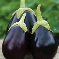 Vinete Black Beauty (1 kg), seminte de vinete forma rotund-ovala, violet-inchis, Agrosem