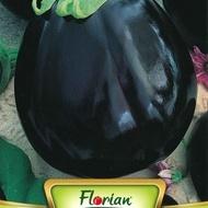 Vinete BLACK BEAUTY - 50 gr - Seminte de Vinete Florian Bulgaria Soi tardiv