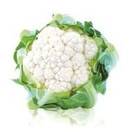 White Excel - 1000 sem - Seminte de conopida ce prezinta o autoprotectie foliara extrem de bine dezvoltata cu capatana densa si mare de culoare alba ce atinge o greutate medie de 2 kg de la Sakata