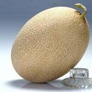 Amal F1 - 1000 sem - Seminte de pepene galben fara nervuri si pastrare indelungata buna de la Clause