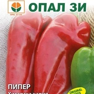 Ardei Capia Hisarska (Kapia de Hisar) - 50 gr - Seminte Ardei Kapia Bulgaresc Fruct Mare si Randament Ridicat