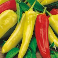 Ardei iute Hungarian Yellow Wax (75 seminte), ardei iute fructe multe, alungite, galbene, Agrosem