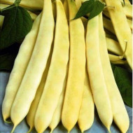 Auria Bacaului (100 gr) seminte de fasole urcatoare galbena cu pastaie lata, Agrosem