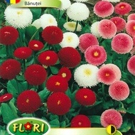 Banutei - Seminte Flori Banutei de la Florian
