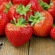 Capsuni Temptation (15 seminte), planta perena, fructe gustoase, dulci, Agrosem