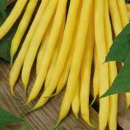Maxidor (100 grame) fasole pitica galbena, bob alb, pastai crocante, Agrosem
