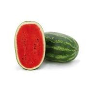 Paladin F1 - 1000 sem - Seminte de pepene verde cu pulpa excelenta si aroma puternica continut mare de zahar ceea ce il face de neintrecut la gust de la Sakata