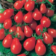 Rosii Radana (90 seminte) de rosii mici tip para, Agrosem