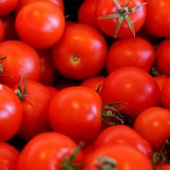 Rosii Red Cherry, (120 seminte), tomate cherry rosii soi timpuriu, crestere nedeterminata, Agrosem