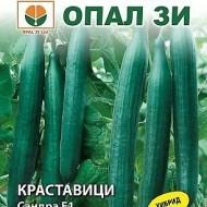 Seminte castraveti lungi Avangard F1 (25 seminte), randament ridicat, gust excelent, Opal