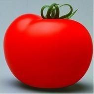 Seminte rosii Cristal F1 (5 gr), nedeterminate semitimpurii pentru sere si solarii, Clause