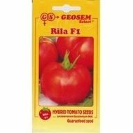 Seminte Rosii Rila F1 (250 seminte) cu crestere Nedeterminate Semitimpurii Rila F1 de la Geosem Bulgaria