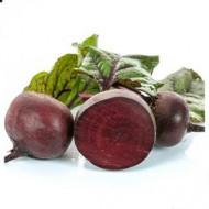 Seminte sfecla rosie Orell F1 (250.000 seminte), hibrid imbunatatit, agroTIP
