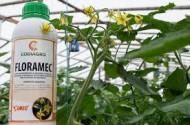 Stimulator nehormonal Floramec (250 ml), reduce cresterea vegetativa excesiva, Codiagro