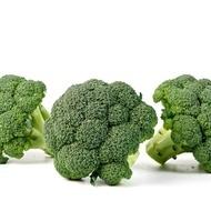 Triton F1 - 1000 sem - Seminte de broccoli cu plante viguroase si aparat foliar puternic ce prezinta o foarte buna capacitate de adaptare la diferite conditii de cultura de la Sakata