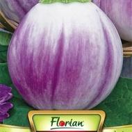Vinete BYAL ROZOV (ALBE ROZ) - 1 gr - Seminte de Vinete Florian Bulgaria Soi timpuriu alb roz