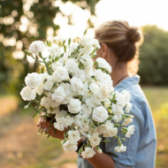 Garoafe Chabaud albe (0.2 grame) seminte de garoafe albe, cu flori mari, Agrosem
