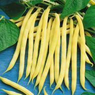 Minidor (30 grame) seminte de fasole pitica galbena, fina si frageda, Agrosem
