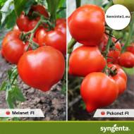 Pekonet F1 (500 seminte) rosii extratimpurii semidetermante, Syngenta