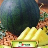 Pepene Verde Janosik - 2 gr - Seminte de Pepene Verde cu Miez Galben Soi Polonez de la Florian